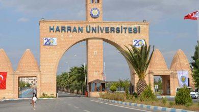 Photo of Harran Üniversitesi'ne Yeni Rektör Yardımcısı Atandı