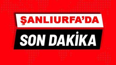 Photo of Şanlıurfa'da Amca Çocukları Arasında Silahlı Kavga: 1 ölü, 8 yaralı