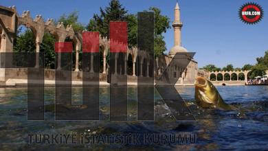 Photo of TÜİK Verileri Açıkladı, Şanlıurfa Türkiye'nin Kaçıncı En Büyük İli Oldu?