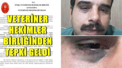 Photo of Viranşehir'de Görev Başında ki Hekime Saldırı
