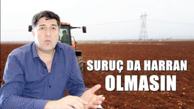 Photo of Suruç'un Kaderi de Harran'a Benzemesin