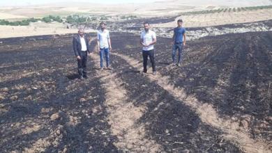 Photo of Urfa'da Çiftçinin Alın Teri Yok Oldu