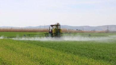 Photo of Şanlıurfalı Çiftçiler Dikkat! Yasak Uyarısı Yapıldı