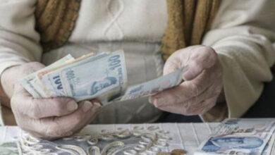 Photo of Bakan Selçuk, Emekli Aylığının Yatacağı Tarihi Açıkladı