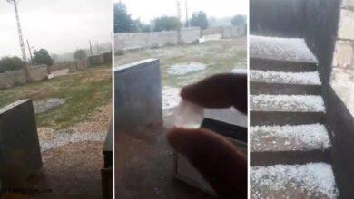 Photo of Urfa Kırsalını Yine Dolu Vurdu