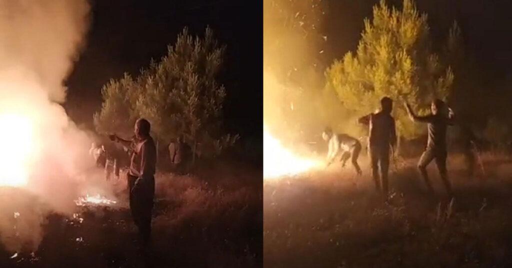 Şanlıurfa Orman Yangını