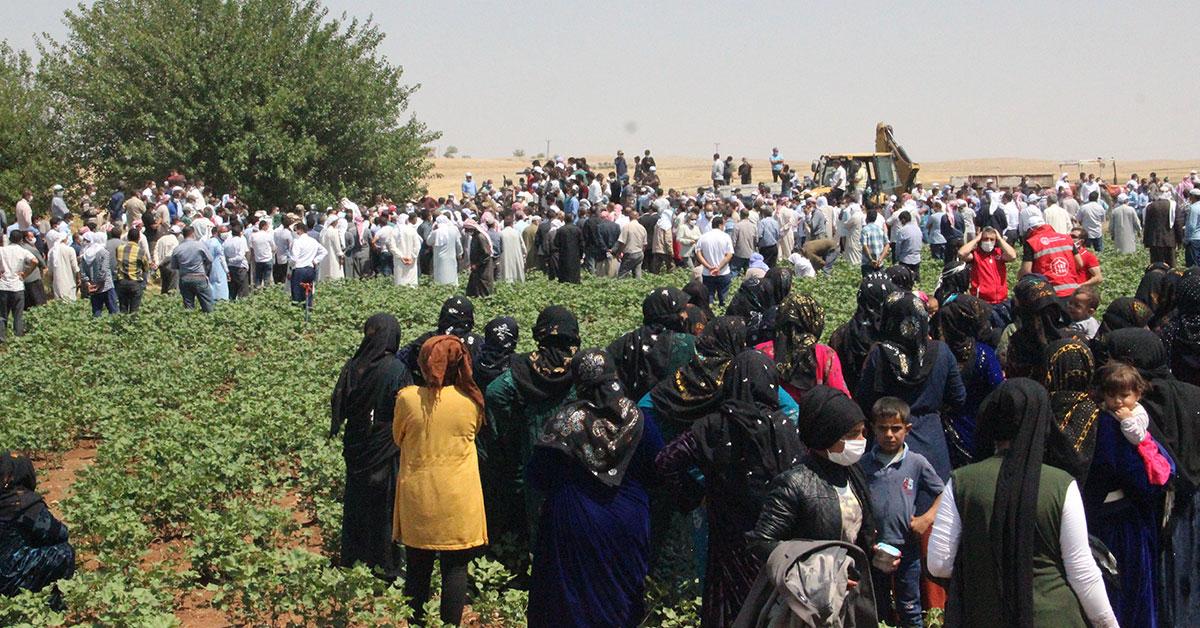 Şanlıurfalı Tarım İşçileri öldü