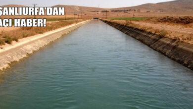 Photo of Şanlıurfa'dan Acı Haber! Gencin Cesedine Ulaşıldı