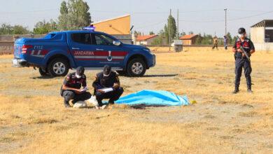 Photo of Urfa'lı çocuk 50 yaşındaki adamı öldürdü