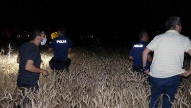 Photo of Buğday Tarlasında Esrarengiz Çığlık ve Silah Sesleri