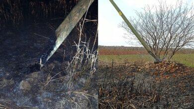 Photo of Anız yangınları elektrik dağıtım hizmetini olumsuz etkiliyor
