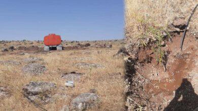 Photo of Urfa'da toprakla buluşan fidanlar sulanıyor