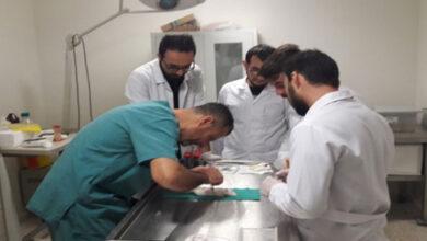 Photo of Harran Üniversitesi Faaliyetleri ile Göz Dolduruyor
