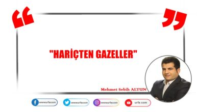 Photo of HARİÇTEN GAZELLER