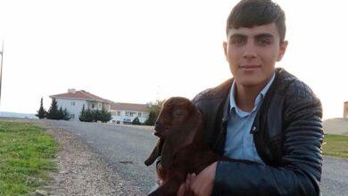 Photo of 16 Yaşındaki Urfalı Genç Boğularak Can Verdi