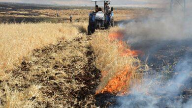Photo of Şanlıurfa'da 400 dönüm ekili arazi kül oldu