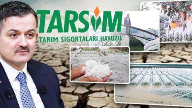 Photo of Şanlıurfalı Çiftçilere Müjde: Bakanlık Ödemeye Başlıyor