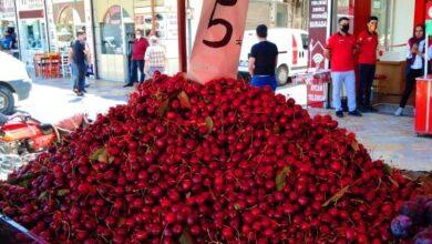 Photo of Urfa'da O Meyvelere Rağbet Artıyor