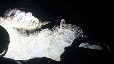 Photo of Urfa'da Balık Avlayanlara Operasyon