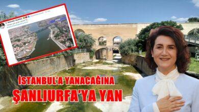 Photo of Urfa Milletvekili İstanbul'a Yanacağına Urfa'ya Yan