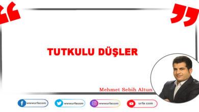 Photo of TUTKULU DÜŞLER