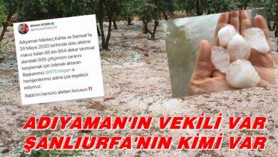 Photo of Adıyaman'ın Vekili Var Urfa'nın Kimi Var