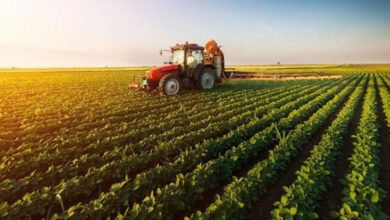 Photo of Çiftçiler Başvurup Parasını Geri Alabilir