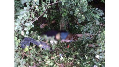 Photo of Yol Kenarında Erkek Cesedi Bulundu