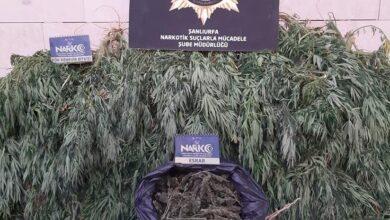 Photo of Urfa'da Büyük Uyuşturucu Operasyonu