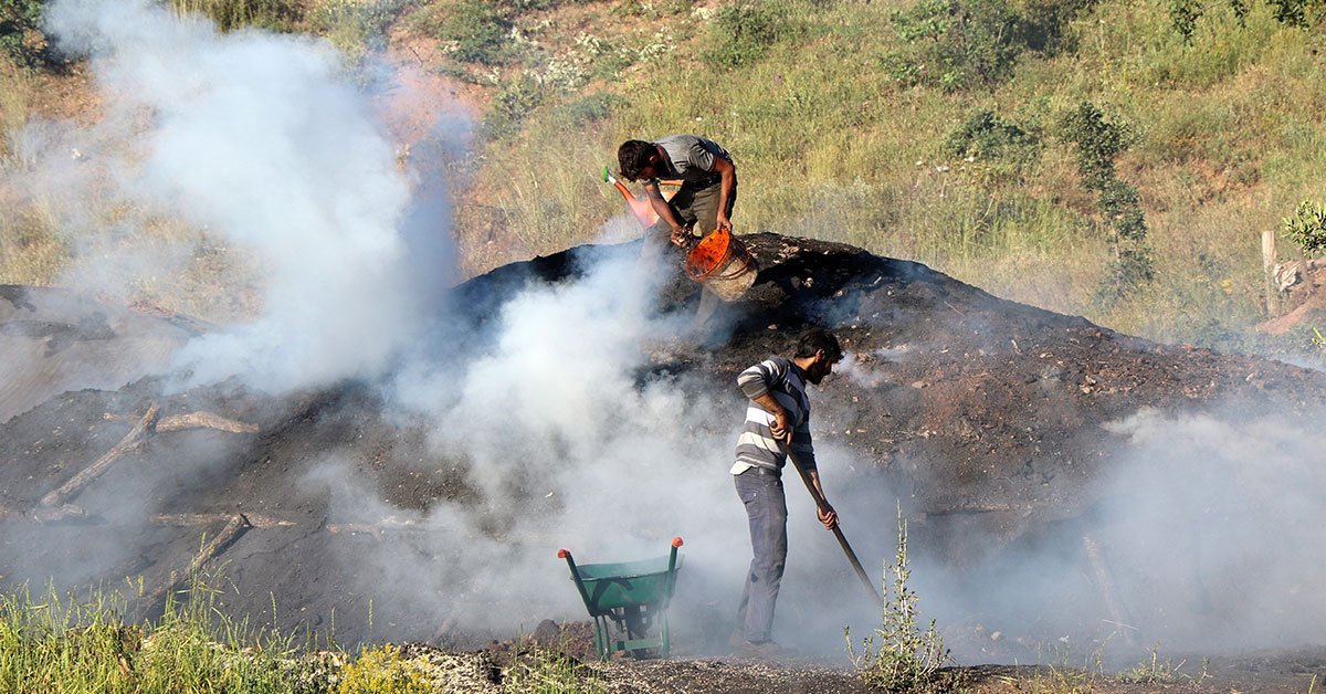 Mangal Kömürü Nasıl yapılır?