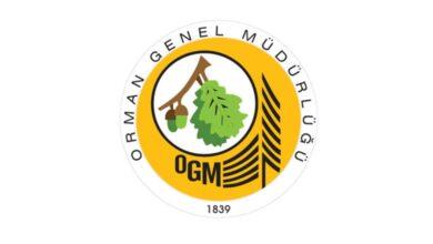 Photo of Şanlıurfa OGM, Daimi İşçi Alacak