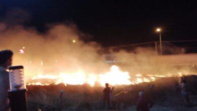 Photo of Ot yangını geceyi aydınlattı