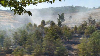 Photo of Halfeti'de çıkan orman yangını 16 saatte söndürüldü