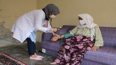 Photo of Yeşeren çınarlara destek sürüyor