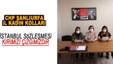 Photo of CHP Şanlıurfa Kadın Kolları: İstanbul Sözleşmesi Kırmızı Çizgimizdir