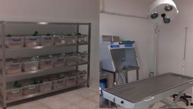 Photo of Harran Üniversitesi Bilimsel Çalışmalarda Hız Kesmiyor