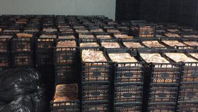 Photo of Fakirlere dağıtacağız diye  41 ton et toplamışlar