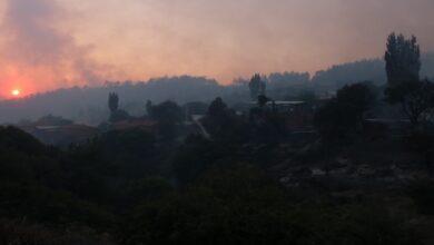 Photo of Orman yangını yeniden başladı
