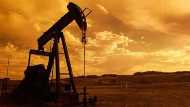 Photo of Şanlıurfa'ya Petrol Müjdesi! Ruhsatı Hazır