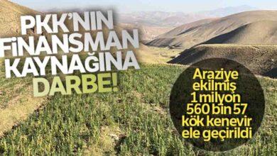 Photo of PKK'nın finansman kaynağına darbe