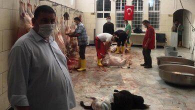 Photo of Şanlıurfalı ihtiyaç sahibi ailelere 600 kurbanlık