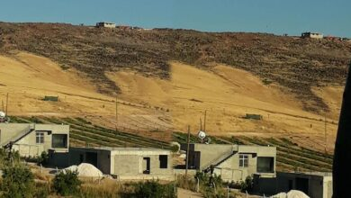 Photo of Urfa'da Köy Halkı Uyardı: Müdahale Edin