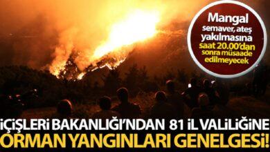 Photo of İçişleri Bakanlığı'ndan 81 il valiliğine orman yangınları konulu genelge