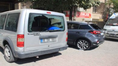 Photo of Şanlıurfa'da eline demir levyeyi alan kadın 21 aracın camını kırdı