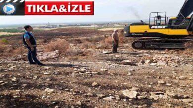 Photo of Şanlıurfa'da  yanan alanlar ağaçlandırma çalışmaları başladı