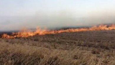 Photo of 100 dönüm anız alev alev yandı