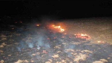 Photo of 500 Dönüm anız alev alev yandı