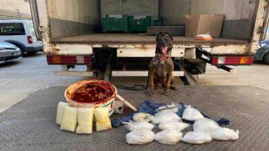 Photo of Salça kovasında uyuşturucu sevkiyatı