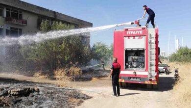 Photo of Urfa'da Lastikleri ateşe veren çocuklar ağaçları yaktı
