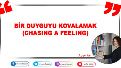 Photo of BİR DUYGUYU KOVALAMAK (CHASING A FEELING)